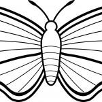 mariposas-para-pintar